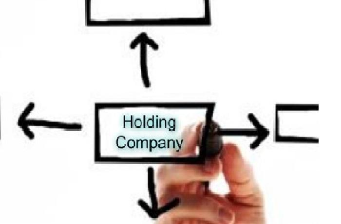 شیوههای مادری در شرکتهای چند کسب و کاره (مادر-هولدینگ)
